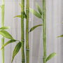 bamboo design PEVA, PVC Free shower curtain