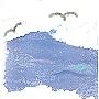 Black sea gulls flying over stormyblue seas