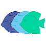 6 mini fish shaped safety mats per pack in blue and aqua