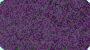 deep bold purple plush carpet for your bath availalbe in extra large sizes